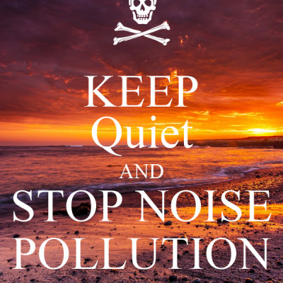 keep-quiet-and-stop-noise-pollution-1
