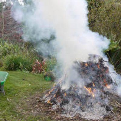 bonfire-m187915